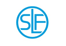SLF弗劳罗伊特轴承 Bearings